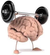 b2ap3_thumbnail_Brain-2_20150427-065447_1.jpg